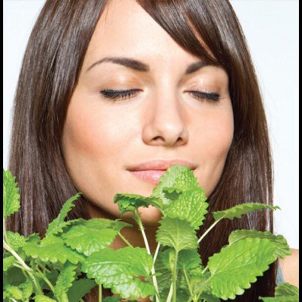 Mulheres percebem cheiros melhor do que homens