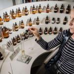 Desenvolvimento de aromas